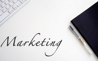 Ser especialista en comercio y marketing es tendencia